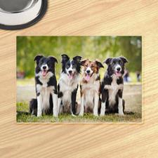 Galería de fotos personalizada Alfombrillas de comida para mascotas